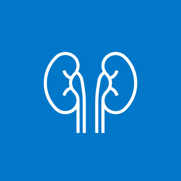 Our Nephrology Team | Rochester Regional Health